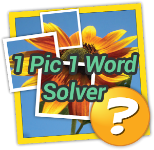1 Pic 1 Word Solver